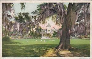South Carolina Charleston Ashley Hall Magnolia On The Ashley