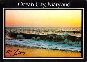 Ocean City -
