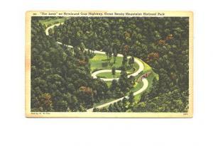 Newfound Gap Highway, Great Smoky Mountains Park, North Carolina, Used 1950