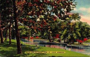 Missouri St Louis Forest Park Duck Lake 1951