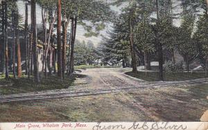 WHALOM PARK, Massachusetts, PU-1907; Main Grove