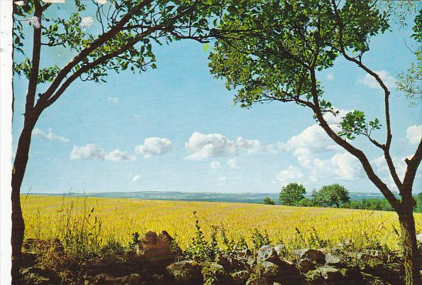 Sweden Beautiful Scenic View