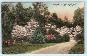 SOUTHERN PINES, North Carolina NC ~ Approach CEDAR PINES VILLA  Postcard