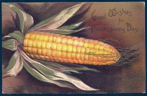 Thanksgiving Ear of Corn A/S Clappsaddle used c1907