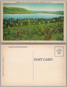 CANANDAIGUA LAKE N.Y. FROM SENECA POINT VINTAGE POSTCARD