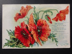 Poppies POPPY CONSOLATION c1910 Old American Embossed Postcard