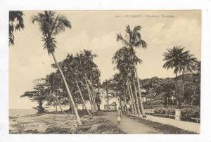 Man Walking,Boulevard Maritime,Conakry,Africa,1 900-10s