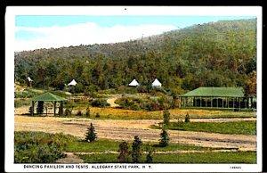 USA Dancing Paviion and Tents Adirondack State Park New York