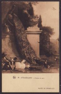 Peacock,Birds,D'Hondecoeter,Painting Postcard