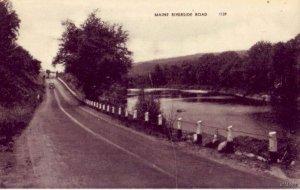 MAINE RIVERSIDE ROAD SCENE 1944