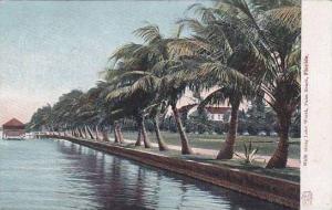 Florida Palm Beach Walk Along Lake Worth