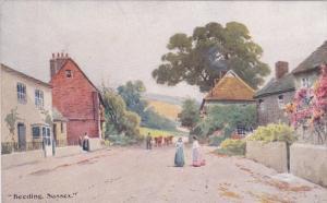 Beeding SUSSEX, England, United Kingdom, Main Street, Cows, 00-10s