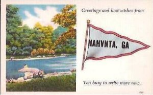 GA Nahunta Greetings From