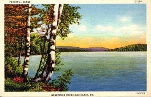 Pennsylvania Greetings From Lake Carey 1939 Curteich