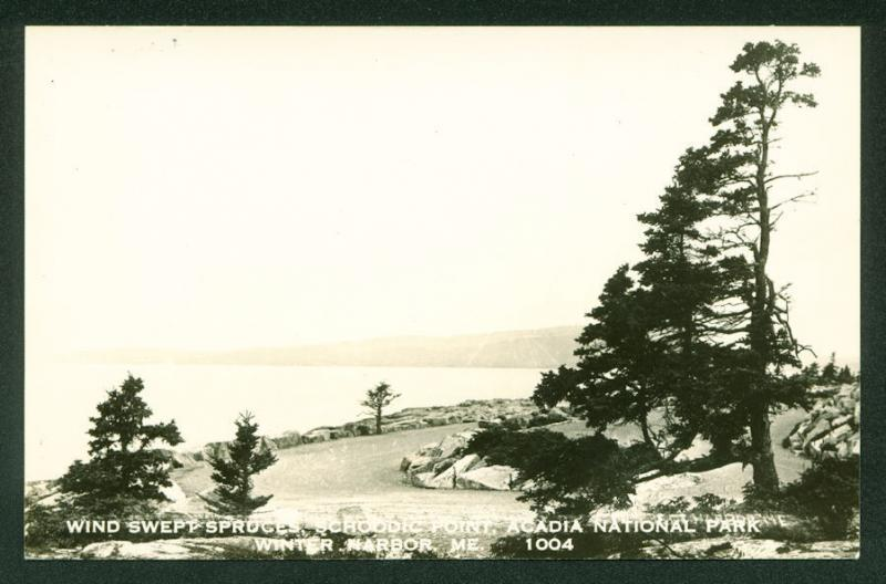 Schoodic Point WINTER HARBOR MAINE Acadia National Park Real Photo Postcard RPPC