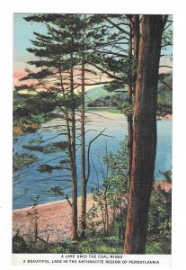 A Lake Among The Coal Mines Reading PA Anthracite Region Vintage Linen Postcard