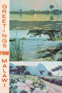 Greetings From Malawi 1970s African Postcard