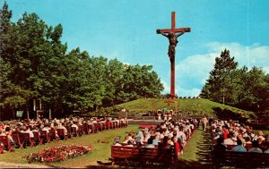 Michigan Indian River Catholic Shrine Largest Wooden and Bronze Crucifix In T...
