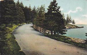 Beautiful Scenery in Point Pleasant Park, Halifax, Canada,  00-10s