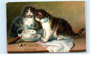 1908 Tuck's Postcard Birthday Series 105 Kittens Cigar Teacup Cats Hanky C70