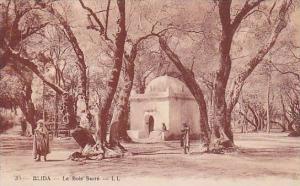 Le Bois Sacre, Blida, Algeria, Africa, 1900-1910s