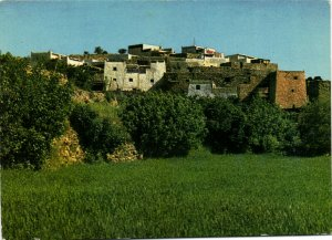 PC CPA SAUDI ARABIA, SOUTH REGION, GREEN ARABIA, Modern Postcard (b15902)