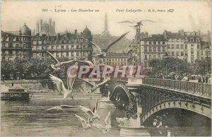 Old Postcard Lyon Seagulls Lafayette Bridge