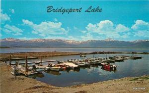1950s Mono California Bridgeport Lake Boat Landing Columbia postcard 7436