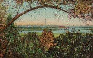 Washington From Arlington Capitol Washington DC Vintage Divided Back Post Card