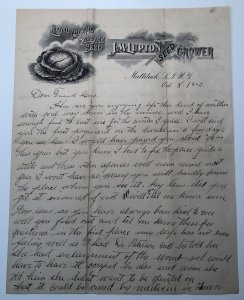 1902 J M LUPTON SEED GROWER Long Island CABBAGE SEED New York Letterhead