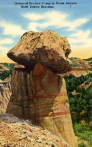 ND - Badlands, Cedar Canyon. Balanced Petrified Stump