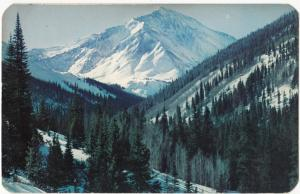 Torreys Peak from Grizzly Gulch on Loveland Pass, Colorado, 1958 used Postcard
