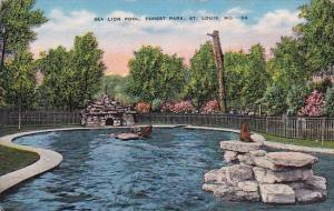 Sea Lion Pool Forest Park Saint Louis Missouri
