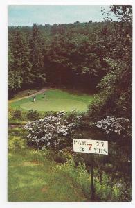 Golf Pocono Manor PA 7th Hole Green Vintage Postcard