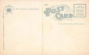 Public Library, Schenectady, New York, Early Postcard, unused