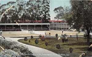 Santa Barbara California~Potter Hotel-Men Playing Tennis @ Courts~c1910 Postcard