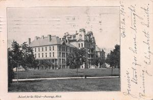 School For The Blind, Lansing, Michigan, Early Postcard, Used in 1905