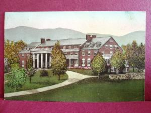 Postcard VA Luray The Mimslyn Hand Colored Albertype #1