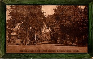 California Chico Normal School and State Normal School 1909