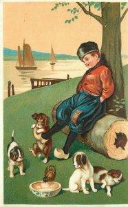 Artist impression C-1910 Dutch Boy Playful Puppy Dogs Postcard 20-10467