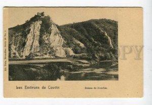 3158459 Belgium Ruines de Dourbes Vintage postcard