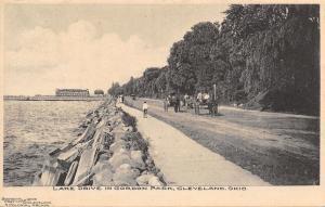 Cleveland Ohio~Gordon Park Lake Drive~Horse & Buggy~Kid on Sidewalk~1905 B&W PC
