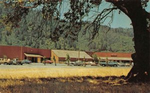 California CA   HOOPA VALLEY SHOPPING CENTER  Humboldt County  c1970's  Postcard