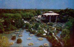 Texas San Antonio Sunken Gardens