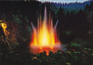 Canada Ross Fountain Illuminated Butchart Gardens Victoria British Columbia