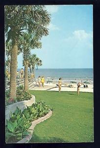 Myrtle Beach, South Carolina/SC Postcard, Family Beach, Palm Trees