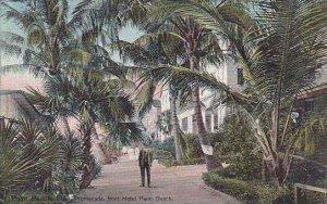 Florida Palm Beach Promenade In Front Of Hotel Palm Beach