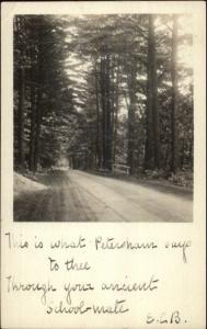 Wooded Road Scene - Petersham MA c1905 Real Photo Postcard