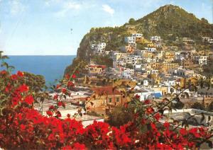 BT0685 Capri panorama con veduta di cesina       Italy