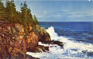 Bar Harbor Maine~Otter Cliff Showing Breaking Surf~Acadia National Park~1950s Pc